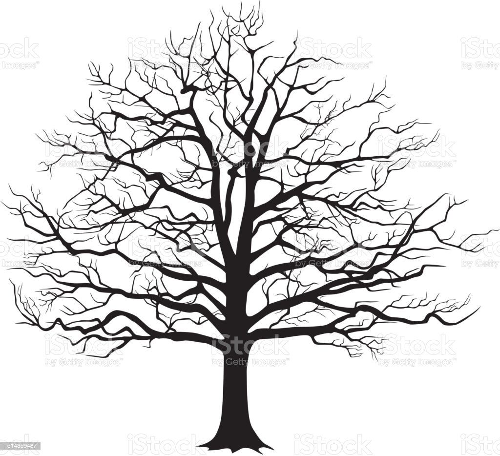 Black silhouette bare tree vector art illustration