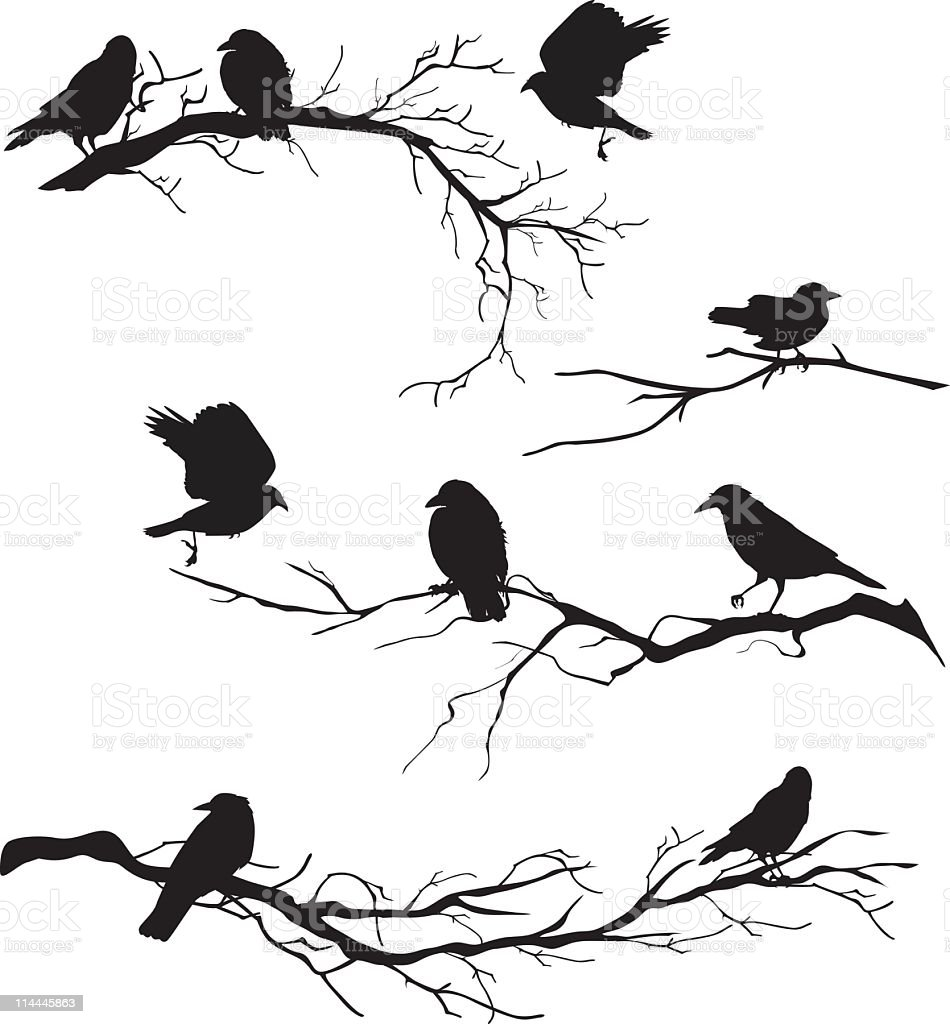 Black Silhouette Crows Perched On Branches Of Various