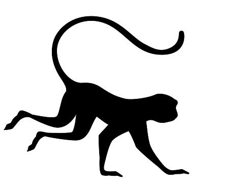 Black silhouette cute vervet monkey cartoon animal design flat vector illustration isolated on white background