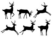 istock Black silhouette icon collection. Brown deer. Hoofed ruminant mammals. Cartoon animal design. Cute deer with antlers. Flat vector illustration isolated on white background 1133201068