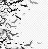 Black silhouette of bats isolated on transparent background. Halloween traditional design element. Vector illustration EPS10
