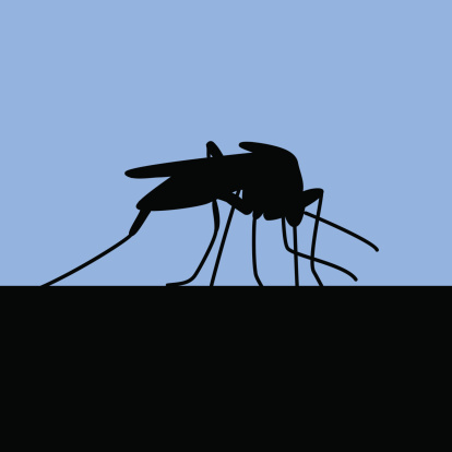 Black Silhouette Of Biting Mosquito Stock Illustration - Download Image Now