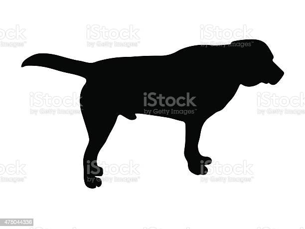 Black silhouette of dog vector id475044336?b=1&k=6&m=475044336&s=612x612&h=u7htzzfvbrirkyizftwkfjq5f m edvnxo1mbwmsgv4=