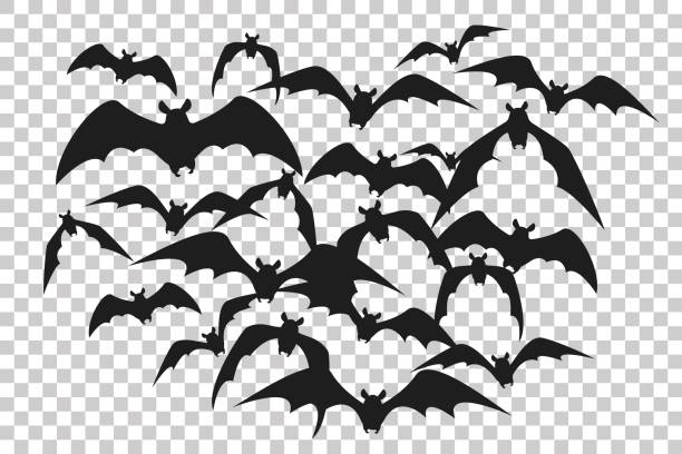 black silhouette of flock of bats. bunch of bats isolated on transparent background. halloween traditional design element. vector illustration - bat stock illustrations, clip art, cartoons, & icons