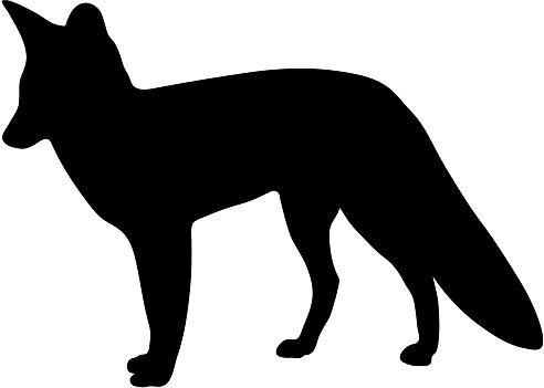 black silhouette of fox on white background of vector illustration
