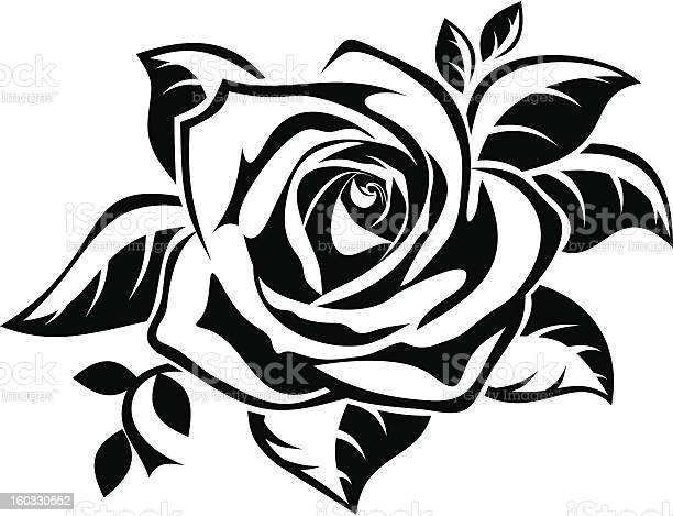 Black silhouette of rose with leaves vector illustration vector id160330552?b=1&k=6&m=160330552&s=612x612&h=ujrjcwbre5o89laybbnueaiujz76dxr7qv34ebczx3k=