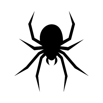 Black silhouette of spider isolated on white background.Vector illustration.