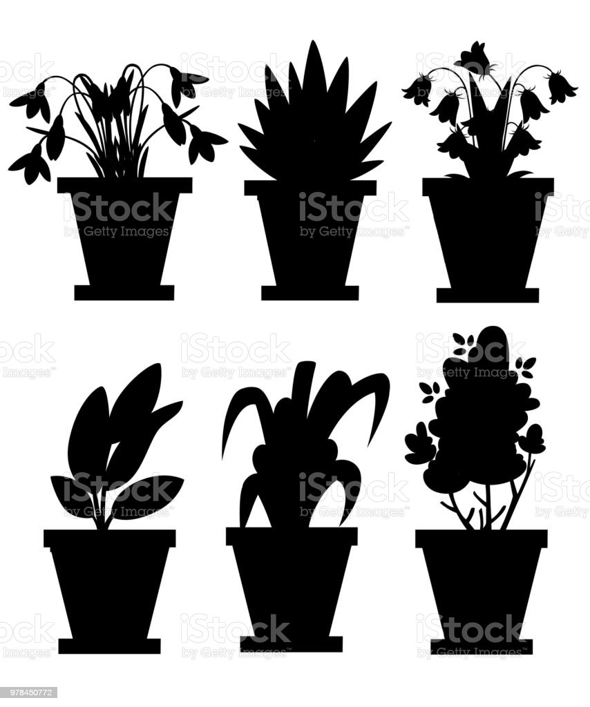 Black Silhouette Set Of Flowers In Pots Indoor And Outdoor Landscape
