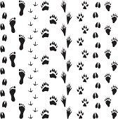 Black Silhouettes - Animal Tracks
