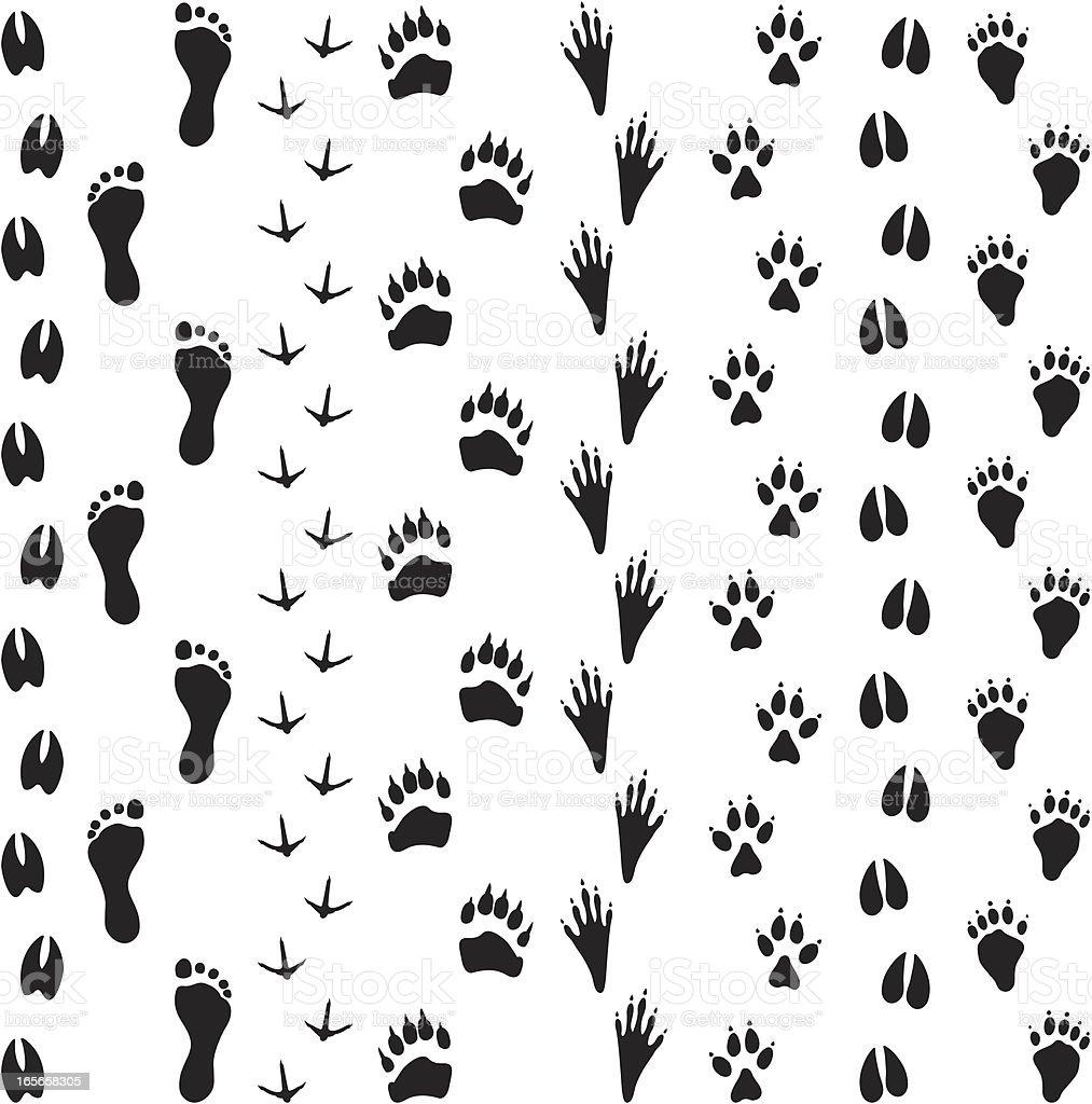 Black Silhouettes - Animal Tracks vector art illustration