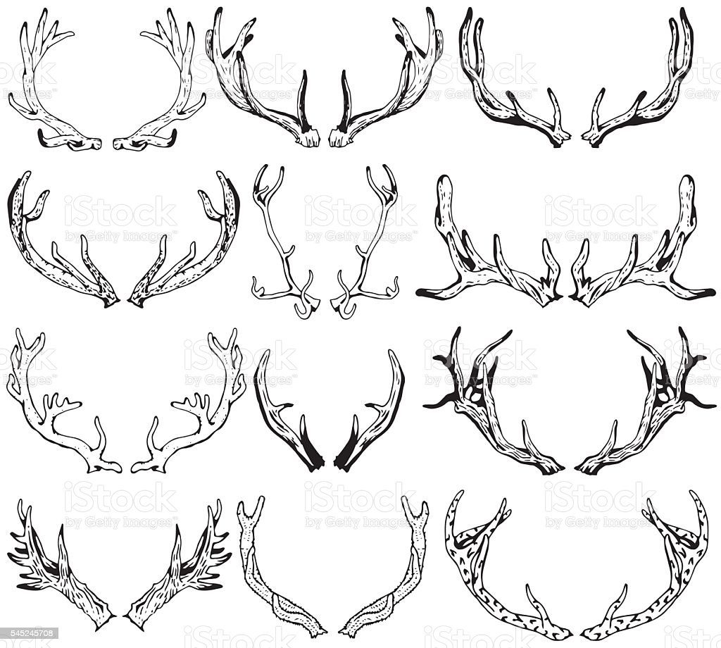 Black silhouettes of different deer horns. Hand drawn illustration. vector art illustration