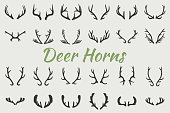 Black silhouettes of different deer horns, vector illustration