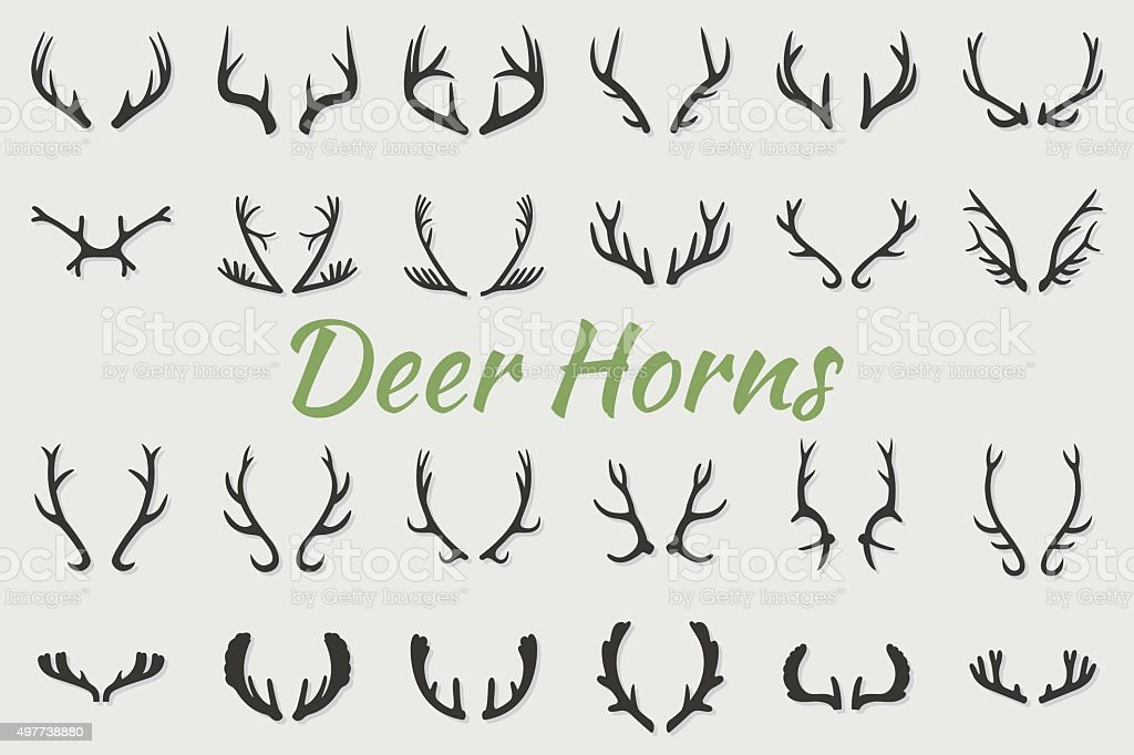 Black silhouettes of different deer horns, vector vector art illustration