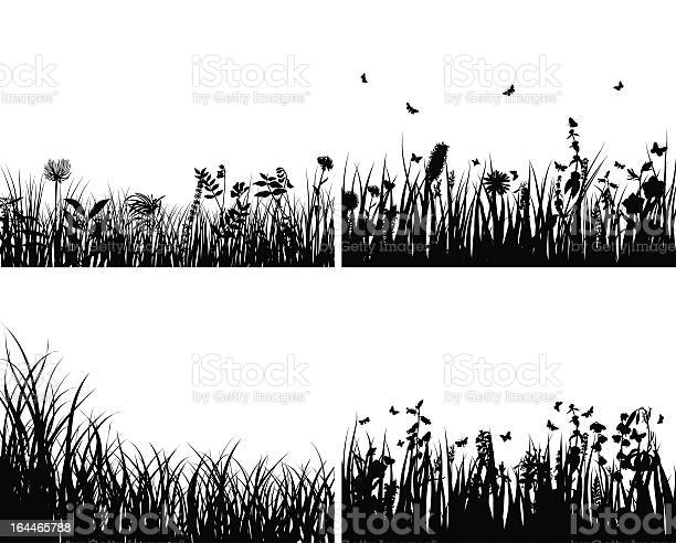 Black silhouettes of meadows with flowers and butterflies vector id164465788?b=1&k=6&m=164465788&s=612x612&h=vhlxqkmbutcw8ebchr1re ouvhcylx4rsyomyu3tr4e=