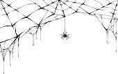 黒蜘蛛と引き裂かれた web。ハロウィンのシンボルの恐ろしいクモの巣