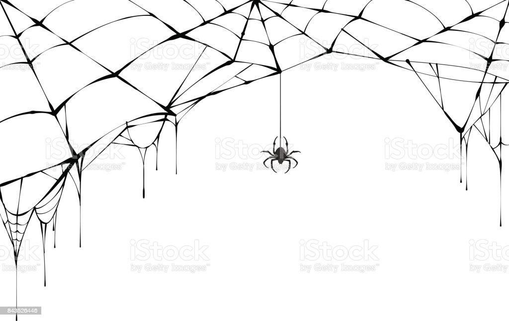 Araña negra y rasgado de la web. Telaraña de miedo del símbolo de halloween - ilustración de arte vectorial