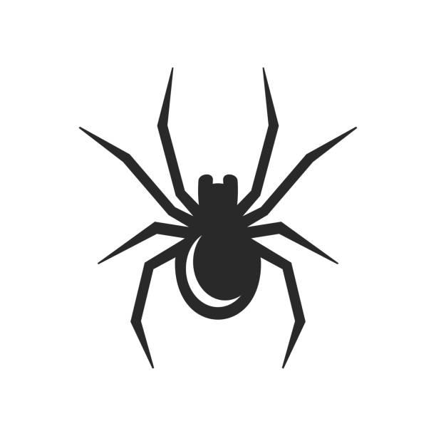 black spider icon. vector - tarantula stock illustrations