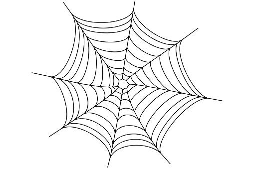 Black spider web on a white background