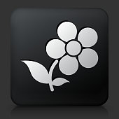 Black Square Button with Flowers Icon. This royalty free vector image features a white interface icon on square black button. The vector button has a bevel effect and a light shadow. The image background is dark grey and the button has a light reflection.