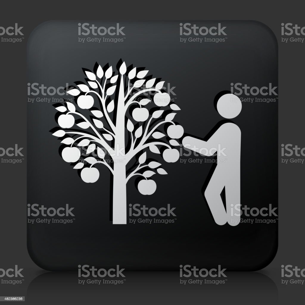 Black Square Button with Tree Harvest Icon. This royalty free vector...