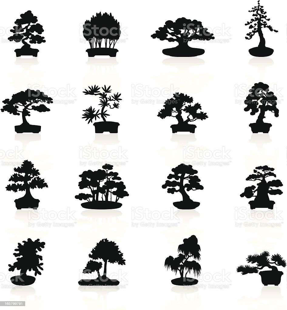 Black Symbols - Bonsai Trees royalty-free black symbols bonsai trees stock vector art & more images of acacia tree