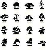 Illustration representing different bonsai trees.