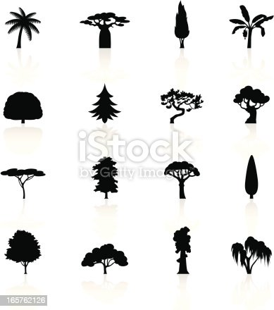 Illustration of different Trees symbols.