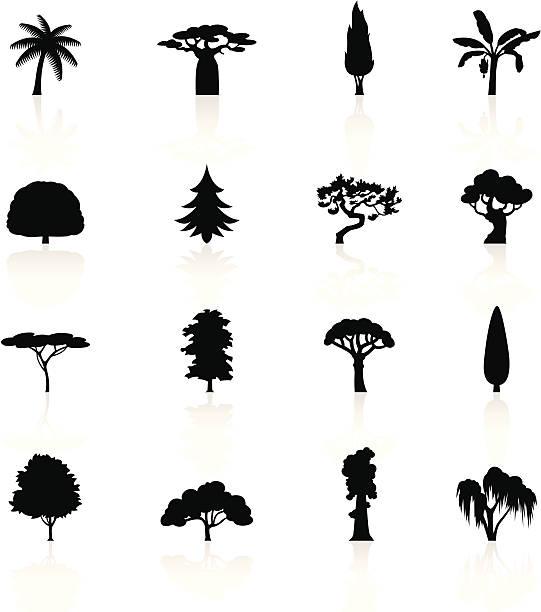Schwarze Symbole-Bäumen – Vektorgrafik