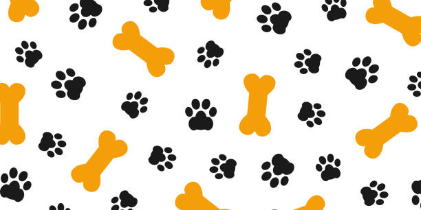 stockillustraties, clipart, cartoons en iconen met zwarte spoor van hond poot patroon met poot voetafdrukken en beenderen, hond bot achtergrond geïsoleerd illustratie cartoon herhalen behang – voorraad vector - hondenkluif