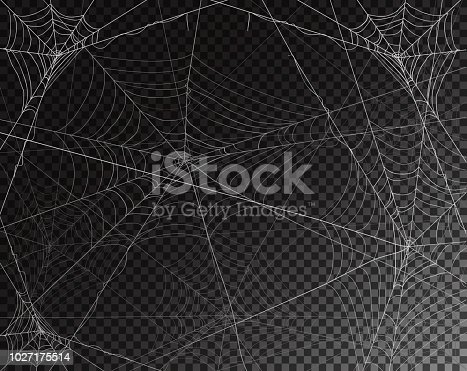 Black transparent background for Halloween with spider webs, illustration.