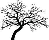 scary bare black tree silhouette