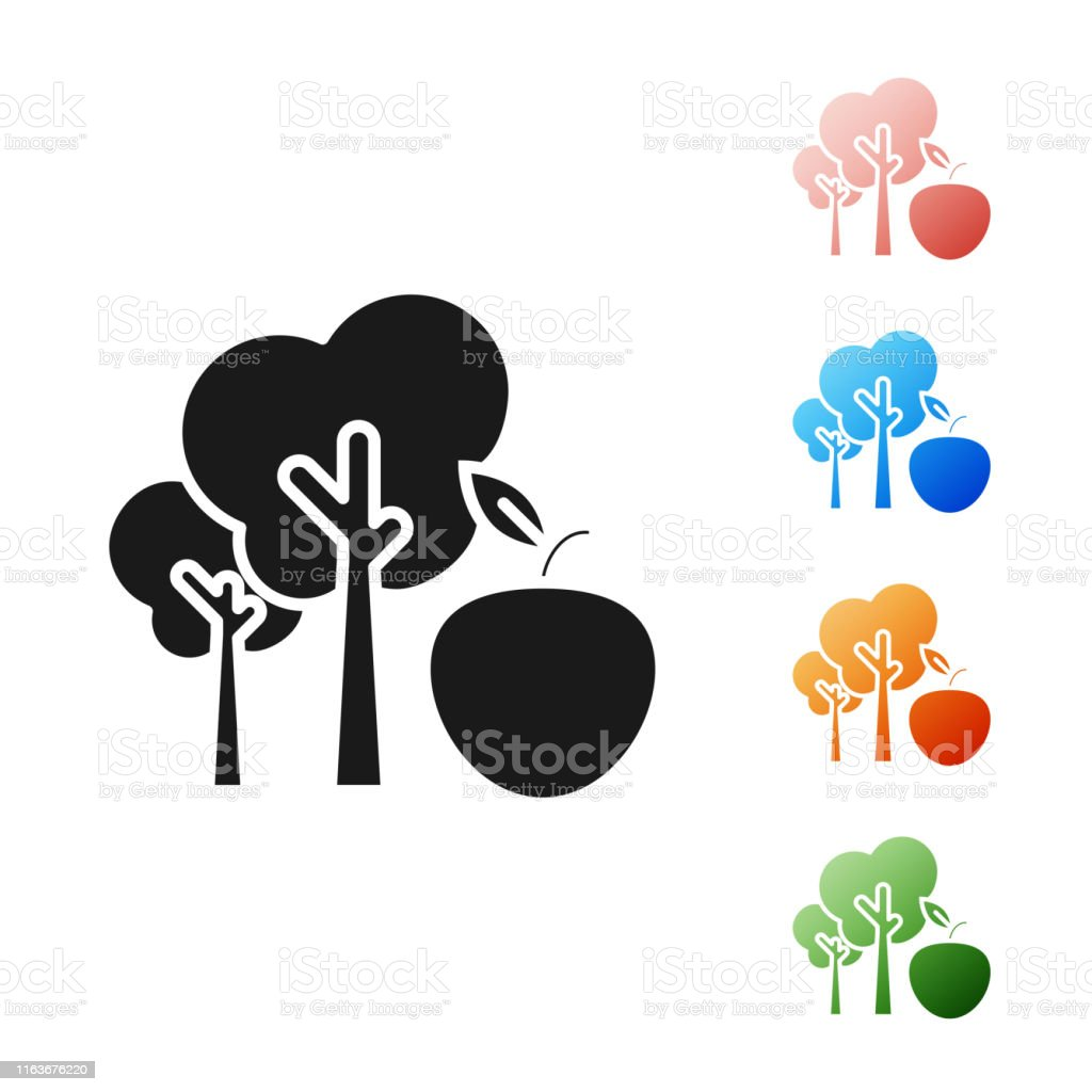 Black Tree With Apple Icon Isolated On White Background