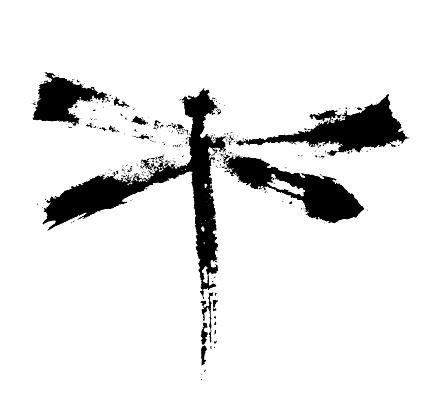 Black vactor dragonfly.