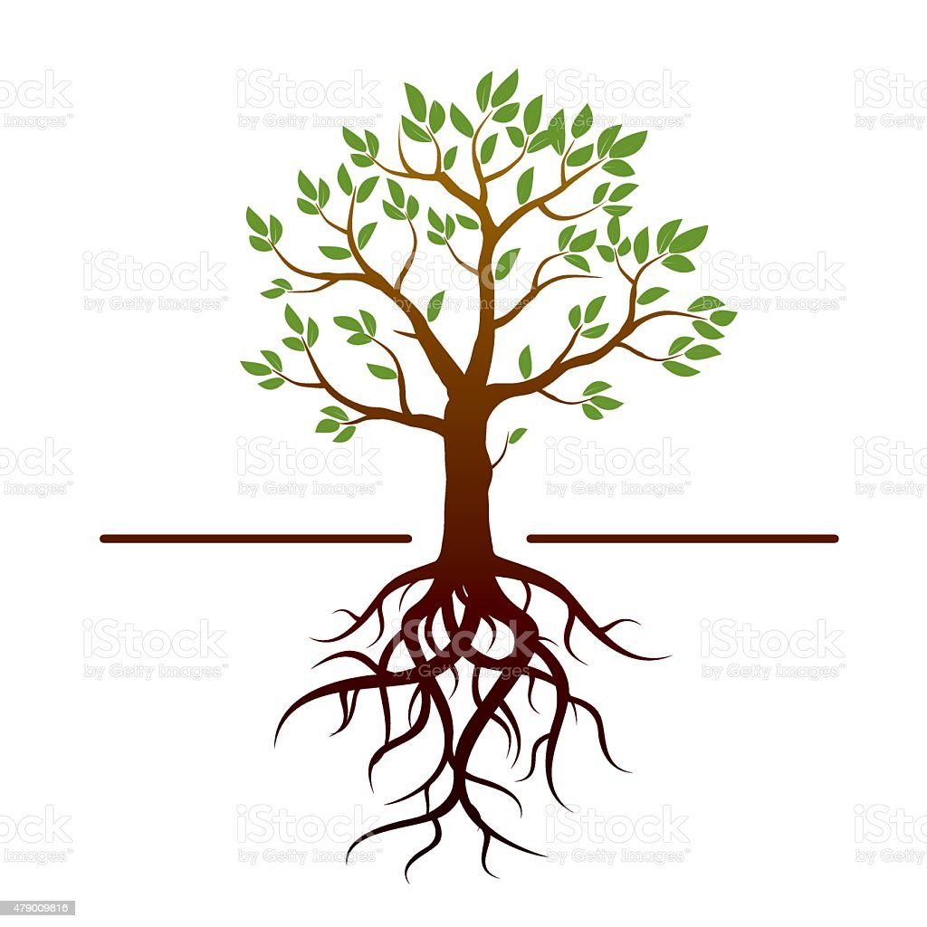 Black vector tree, green leafs and roots. vector art illustration