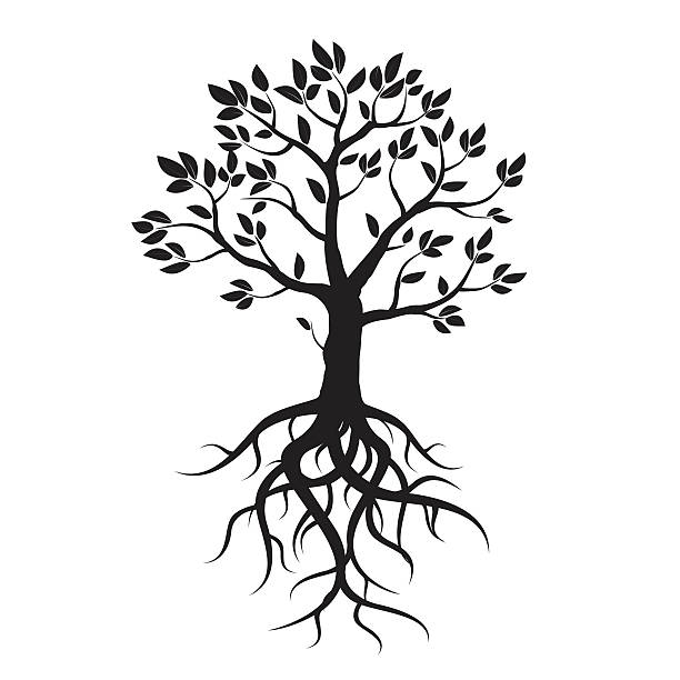 Royalty Free Silhouette Of A Tree Roots Clip Art, Vector ...