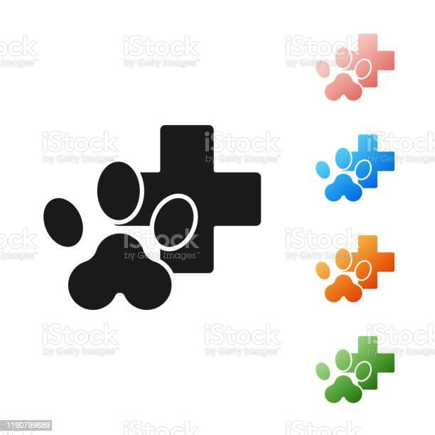 Black veterinary clinic symbol icon isolated on white background vector id1190799889?b=1&k=6&m=1190799889&s=612x612&h=9s6vt kanwrwowsxd5bvwmix f0jygmnzagi55opows=