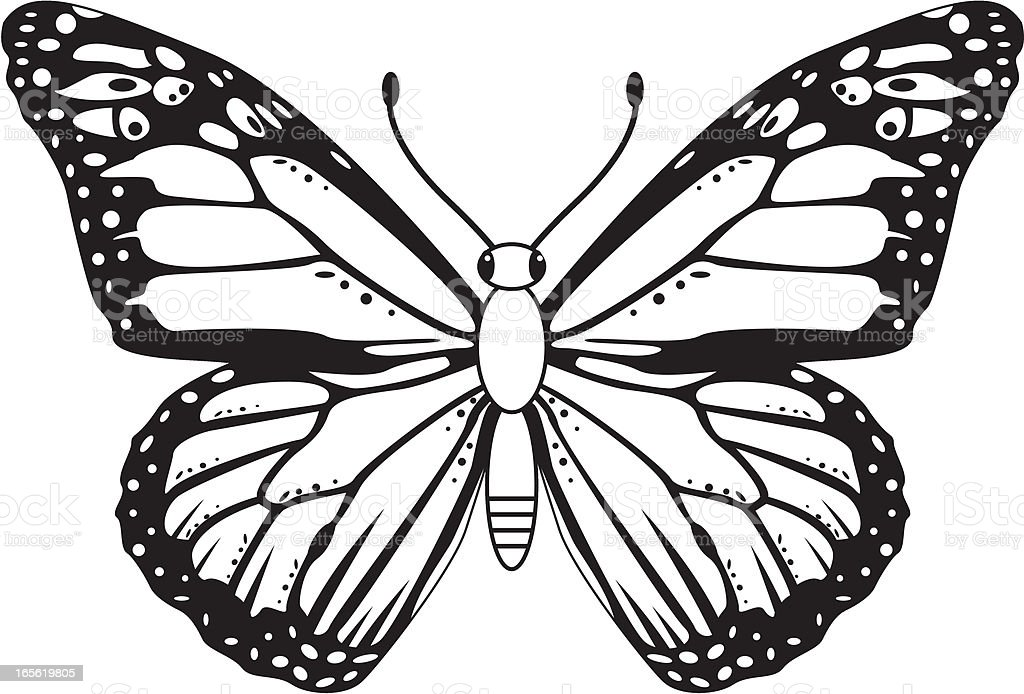 Black White Monarch Butterfly Stock Illustration ...