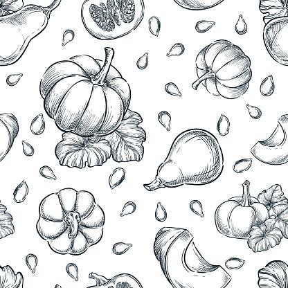 Black white pumpkins vector seamless pattern. Sketch hand drawn illustration. Autumn gourd harvest, seeds background.