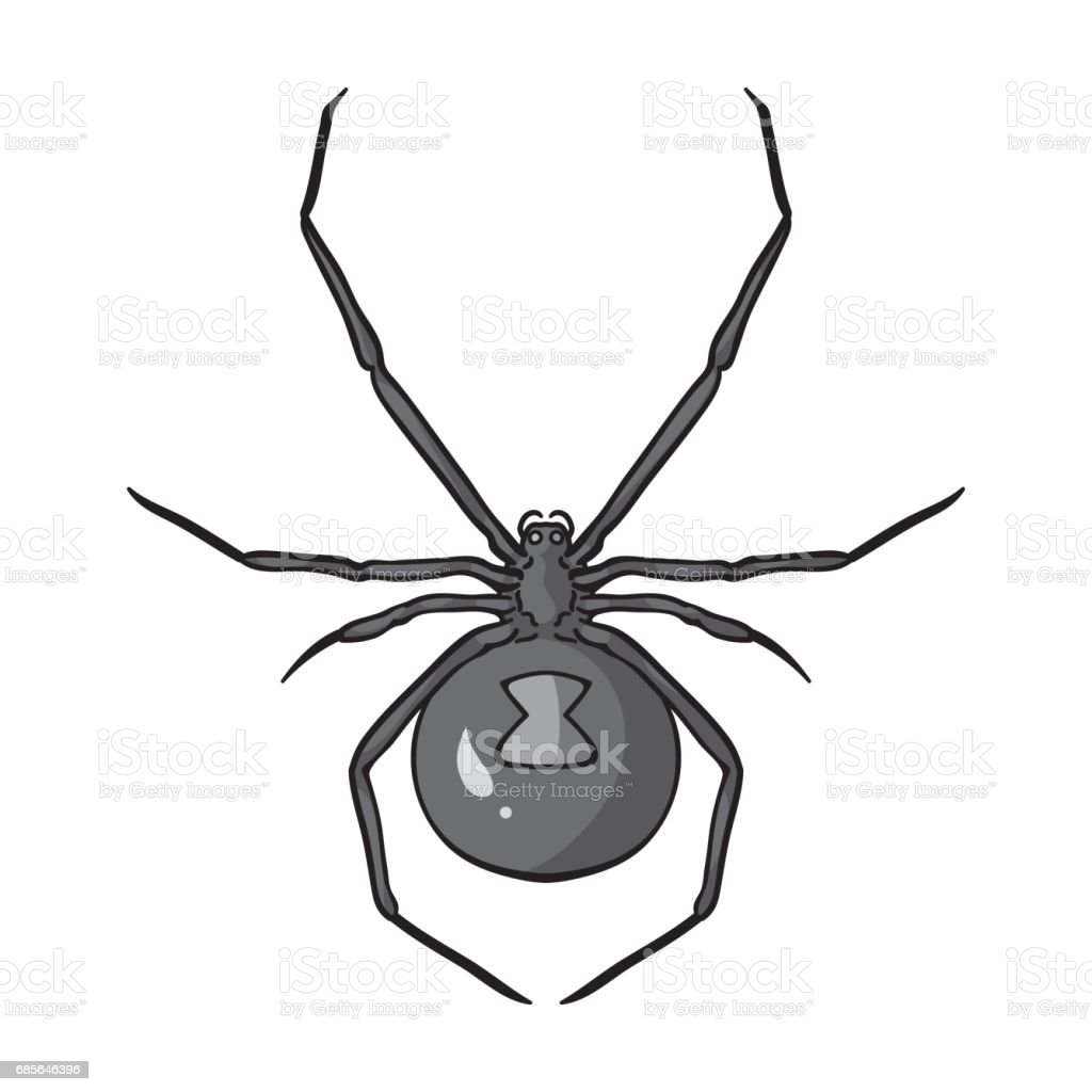 Black widow spider icon in monochrome style isolated on white background. Insects symbol stock vector illustration. 免版稅 black widow spider icon in monochrome style isolated on white background insects symbol stock vector illustration 向量插圖及更多 動物背部 圖片