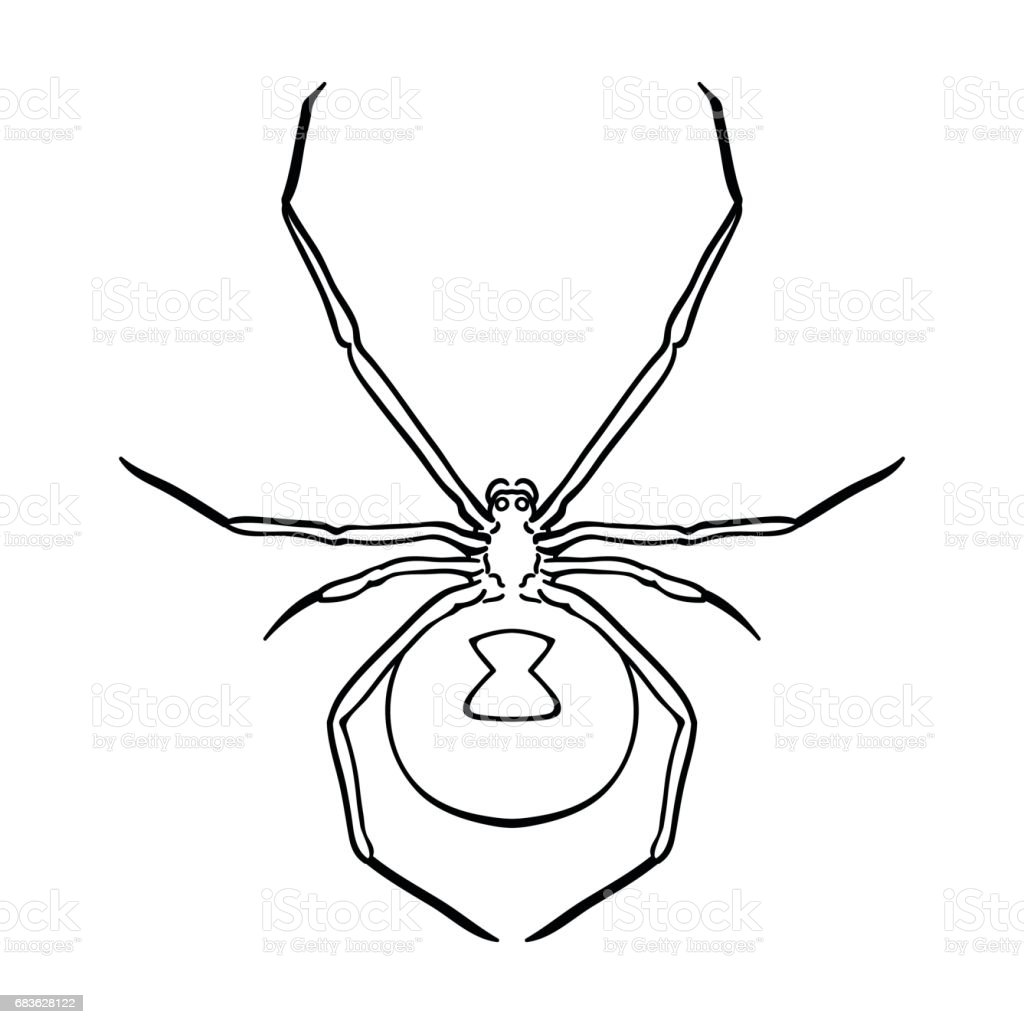 Black Widow Spider Icon In Outline Style Isolated On White