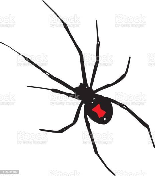 Spider Tattoo Free Vector Art 36 Free Downloads