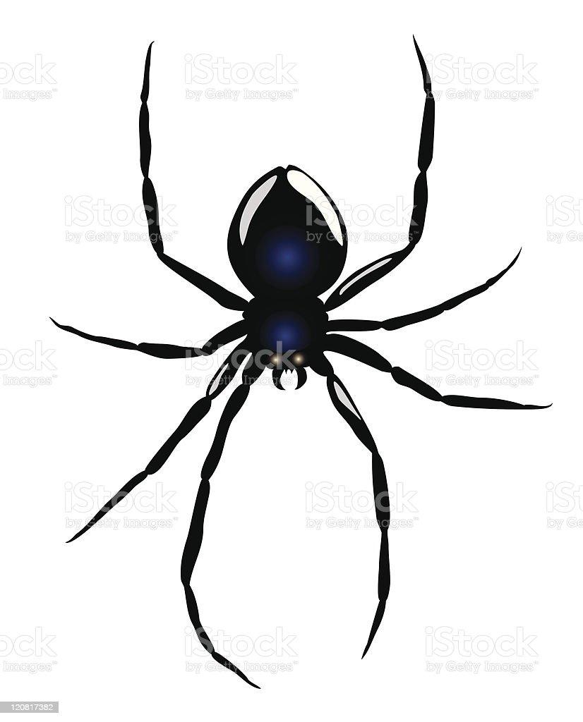 Black Widow Spider royalty-free stock vector art