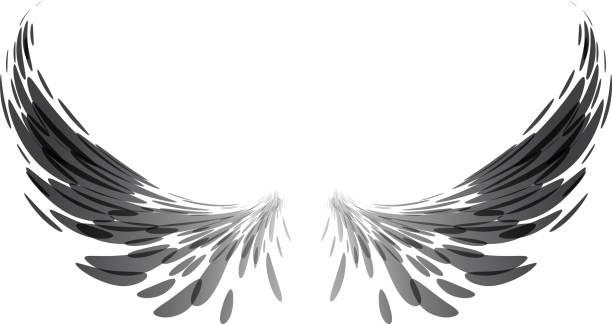 翼を広げる イラスト素材 Istock
