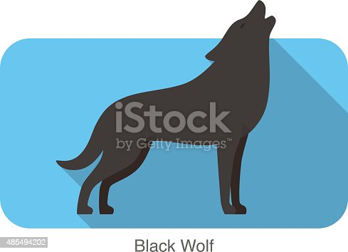 Black wolf standing and roaring