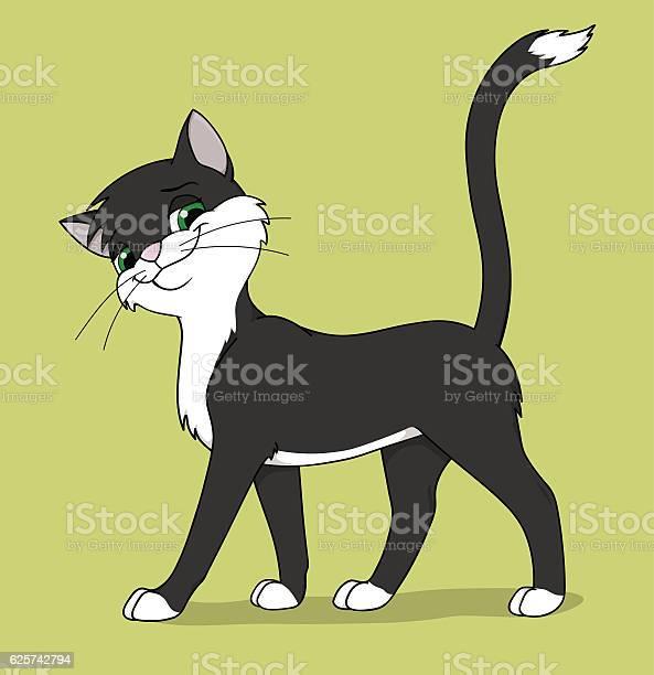 Black and white cat vector id625742794?b=1&k=6&m=625742794&s=612x612&h=jnqz6kpdivh7rbn3pfdswdjyp9rlguolrkhrgzgwvp0=
