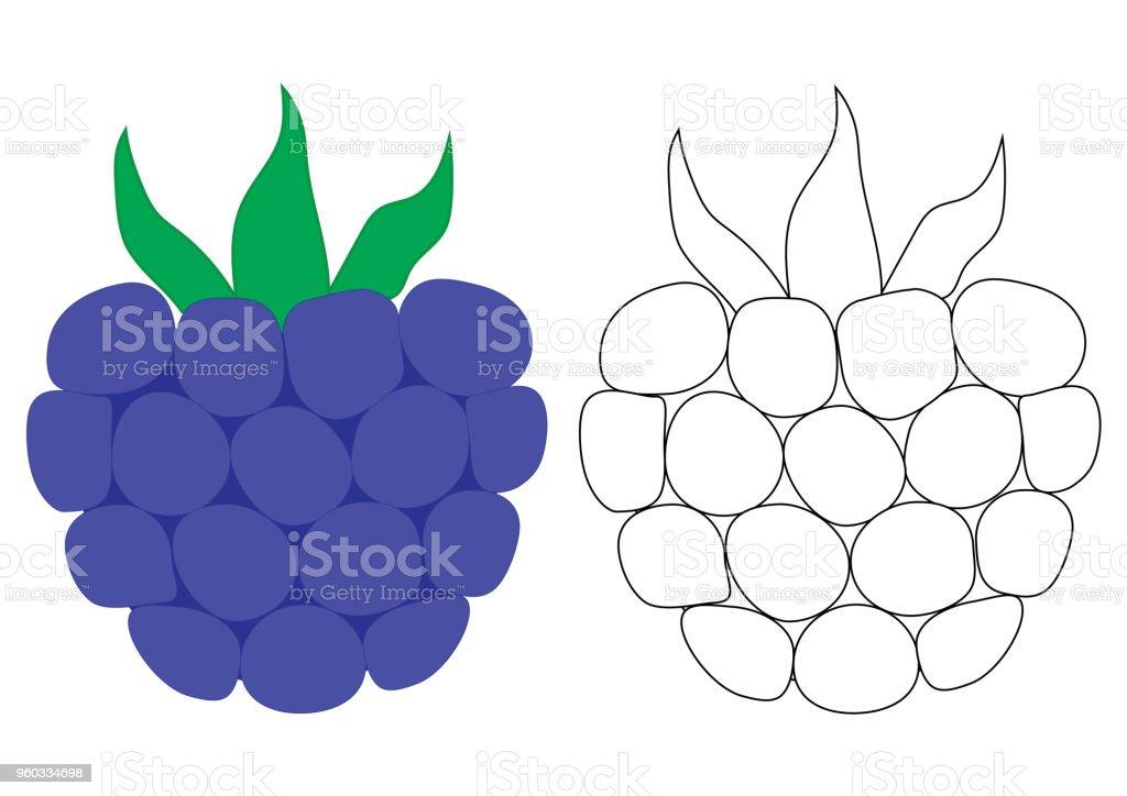 Ilustración de Dibujos Animados De Blackberry Página Para Colorear ...