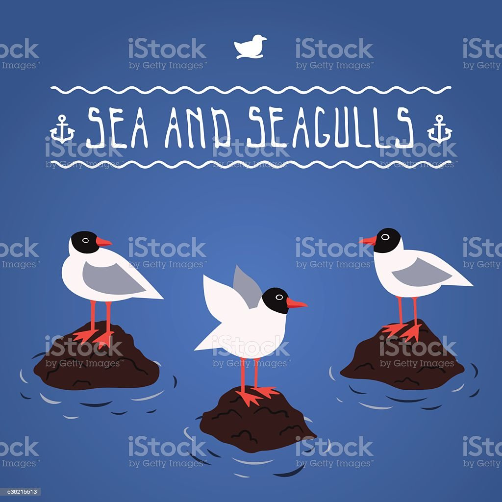 Blackhead seagulls and sea vector background vector art illustration