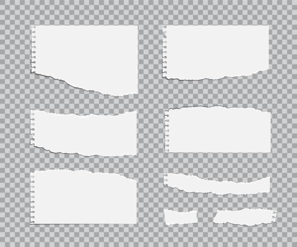 ilustraciones, imágenes clip art, dibujos animados e iconos de stock de conjunto de hojas de papel blanc rasgado. elementos de diseño realista vector. - fondos arrugados