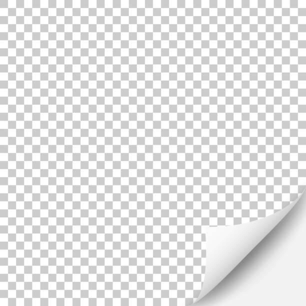 blank background with curled page - zwinięty aranżacja stock illustrations