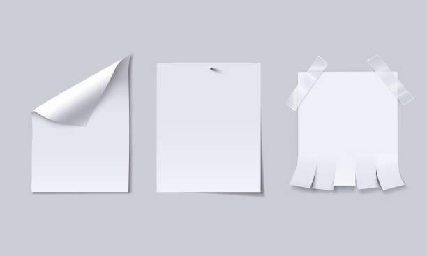 ilustrações, clipart, desenhos animados e ícones de folha de papel em branco, com ondulação de página, anexada com unha e publicidade com picote guias. - fixando